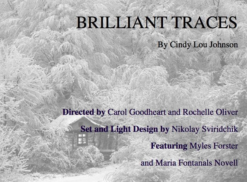 Brilliant Traces by Cindy L. Johnson